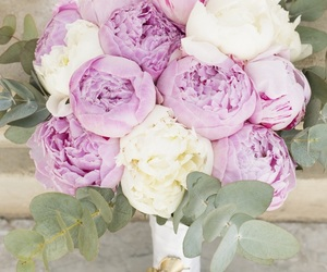 bouquet, pink, and peonies image