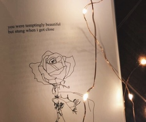 book, rupi kaur, and boy couples couple image