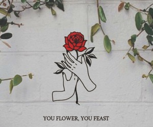 quote and rose image