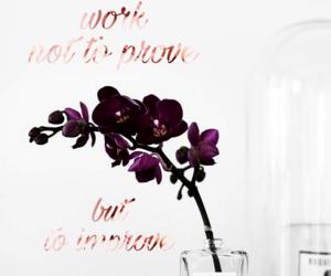 Image by Alena