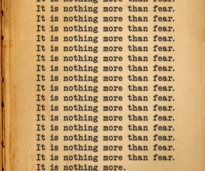 fear, nothing, and quotes image