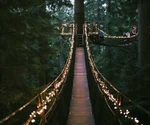 light, nature, and bridge image
