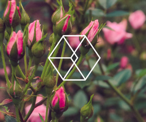 exo and wallpaper image