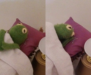funny, kermit, and reaction pics image