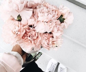 aesthetic, roses, and cute image