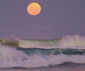 beach, dreamy, and moon image