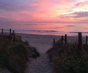 beach, pink sky, and sunset image