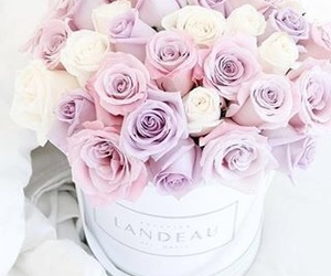 bucket, flowers, and girly image
