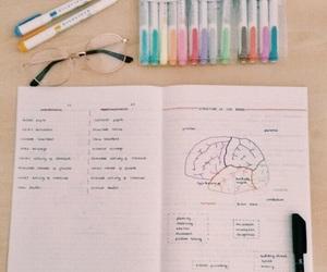 brain, Dream, and ideas image