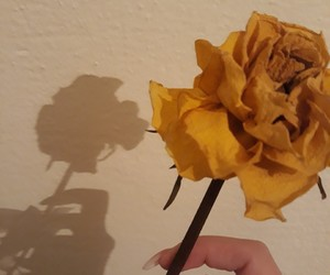art, artistic, and flowers image