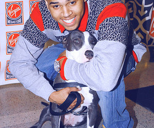 chris brown, dog, and cute image