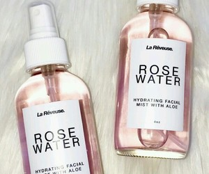 rose, pink, and rose water image