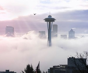 aesthetic, city, and fog image
