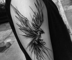 tattoo, fenix tattoo, and fenix bird image