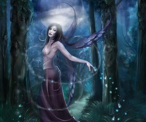 fairy, forest, and magic image