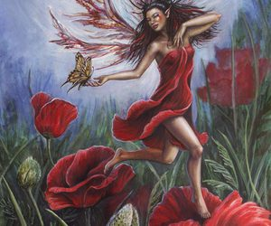 fairy, poppy, and red image