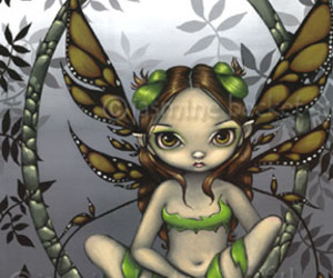 fairy and green image
