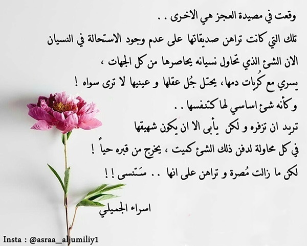 quote, ﺍﻗﺘﺒﺎﺳﺎﺕ, and كُتُب image