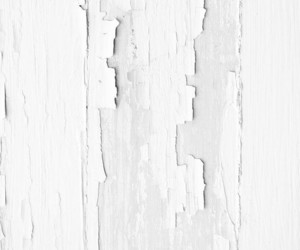 aesthetic, Blanc, and texture image