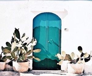 architecture, cactus, and door image