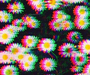flowers, background, and trippy image