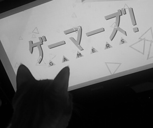 aesthetic, anime, and cat image