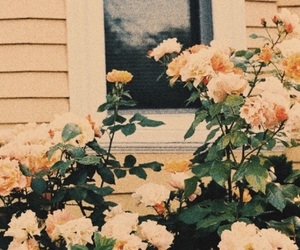 flowers, grunge, and pretty image