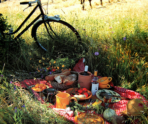 picnic, food, and grass image