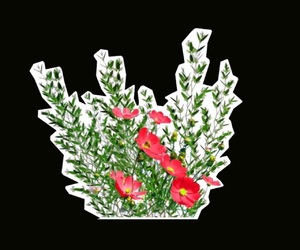 overlay, plant, and sticker image