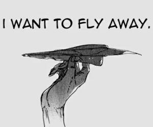 fly, manga, and anime image