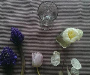 hyacinth, morning, and nature image