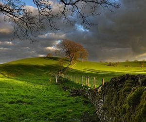 nature and landscape image