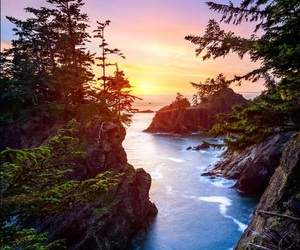 beautiful, nature, and river image