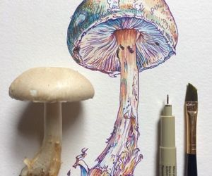 art, artline, and colour image
