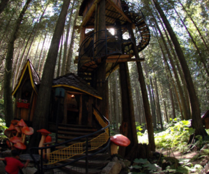 beauty, treehouse, and cool image