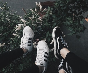 adidas, vans, and plants image