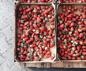 strawberry and fruit image