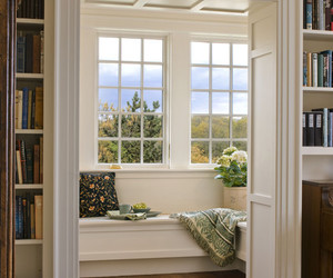 books, library, and window image