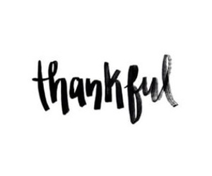 thankful, quote, and calligraphy image
