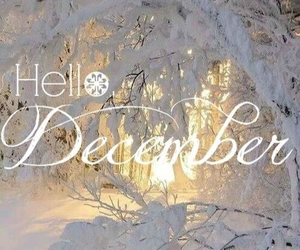 snow, winter, and hello december image