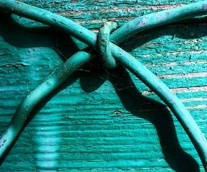 blue, teal, and turquoise image