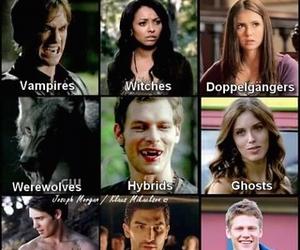 tvd, vampire, and the vampire diaries image