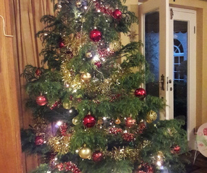 decorations, lights, and tree image