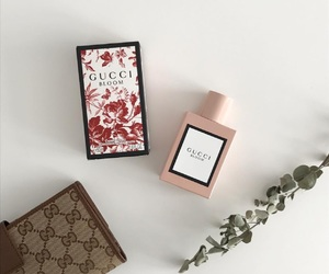 aesthetic, perfume, and pink image