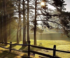 country living, fence, and pasture image
