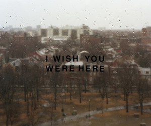 here, were, and i wish you were here image