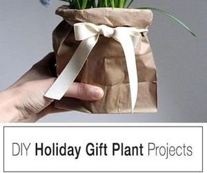 diy, diy gift ideas, and diygiftideas image