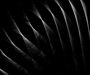 abstract photography, black, and pattern image