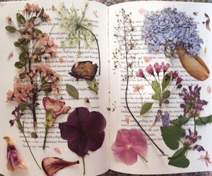 art, flowers, and notebook image