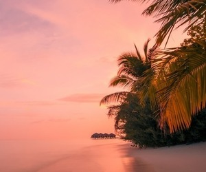ocean, beach, and sunset image